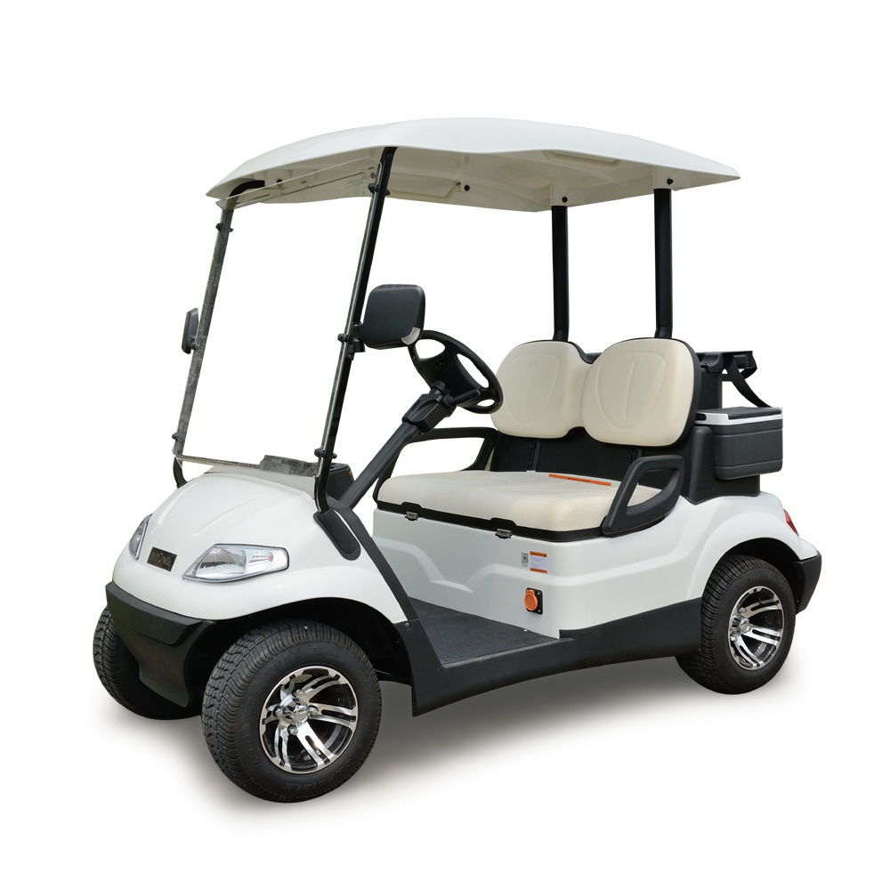2 Person Golf Car Lt-A627.2