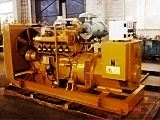 Gas Generator Set (24kw-600kw)