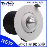 Home Modern 14W Waterproof Ceiling Light LED