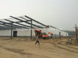 Prefabricated Steel Structure Building (SSW-202)