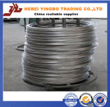 Bwg 12 14 16 18 Hot Dipped / Electric Galvanized Iron Wire