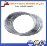 3.0 mm Galvanized Steel/Iron Wire Manufacturer/Gi Wire