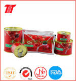Hot Sell Good Quality Tomato Sauce (tomato paste manufacture)