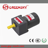15W Single Phase Small AC Motor with Gearbox