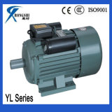Yl Electric Car Motor 15kw
