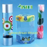 Fashion Style Clear Plastic Tube with Lid (B-1)
