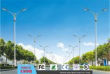90W Outdoor LED Street Light (DL0105)