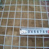 Gi Welded Wire Mesh (DYWM961164)