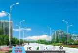 30W Outdoor LED Street Light (DL0091)