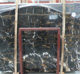 Black Gold Flower Granite for Countertop /Kitchen Countertop