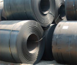 Hot-Rolled Steel Coil/Sheet