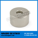 N42m Ring Injection Molding Magnet
