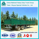 40'platform Semi-Trailer with Side Wall Pane (TAZ9250)