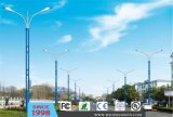 30W Outdoor LED Street Light (DL0090)