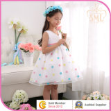 Latest Design Flower Girl Dress in Children Apparel