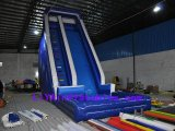 Inflatable Water Slide (LY07226)