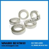 Big Ring Neodymium Coated Strong Speaker Magnet