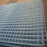 Alibaba Hot Sale Product Holland Wire Mesh, High Quality Dutch Wire Mesh, PVC Coated Dutch Wire Mesh