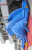 Cheap Commercial Blue Dolphin Inflatable Water Slide Chsl231