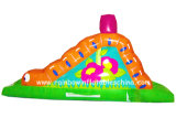 Inflatable Hight Quality Mini Slide for Kids