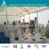 10m Wide Transparent Window Event Tent (YSW10B604)