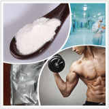 Hot Sell Synephrine Natural Plant Extract Synephrine for Weight Loss