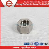Stainless Steel Hex Nuts / Ss304 Ss316 Heavy Hex Nut