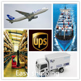 Your Reliable Shipping Agent (20'ft/40'ft/40'HQ) From China to Holland