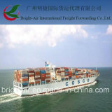 Shipping Agent Form China to Nigeria
